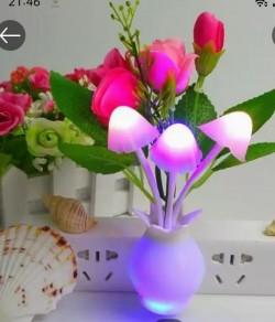 http://www.999shopbd.com/মাশরুম লজ্জাবতী ড্রিম লাইট